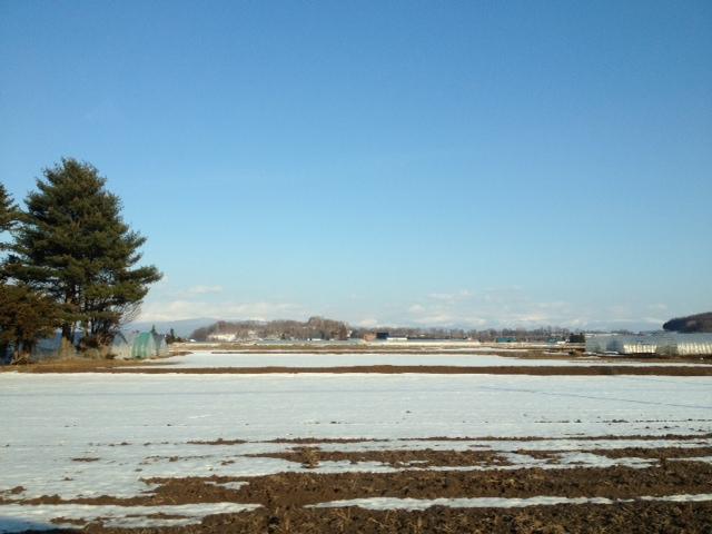 春の兆し@旭川空港近く
