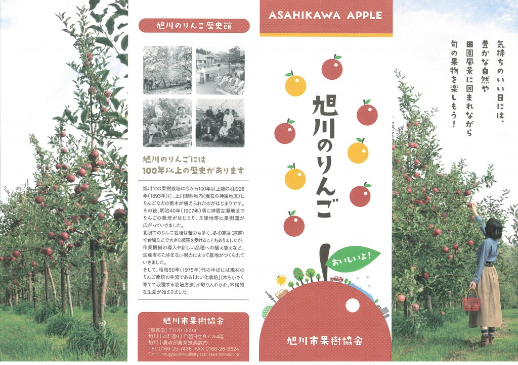 旭川のりんご