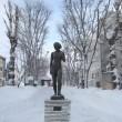 7条緑道・冬の風景