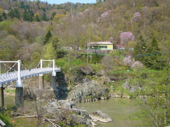 春の神居古潭(桜の風景)