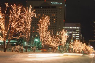 冬の旭川を光の演出で彩る「街あかりイルミネーション」