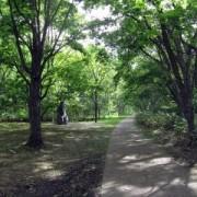 市内中心部から北の丘陵地帯にある「春光台公園」