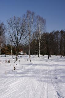 春光台公園・歩くスキーコース