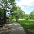 公園内の様子②