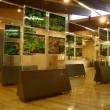 嵐山公園センター内にある資料館の展示物