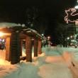 7条緑道・夜のライトアップ(冬)①