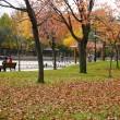 常磐公園・紅葉風景