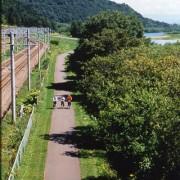 旭川サイクリングロードは市内の川沿いなどにあります