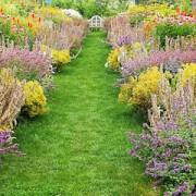 彩り鮮やかに咲き誇る英国風ガーデン