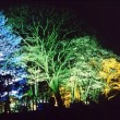 旭山公園・夜のライトアップ