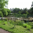 敷地内にある池