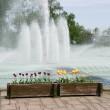 昼間の噴水?