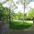 公園内の様子①