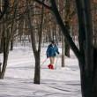 スキーコースの様子