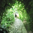 ガーデン内の風景