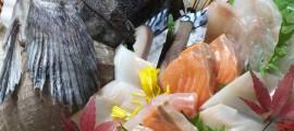 北海道さかな一途 直営 魚問屋